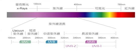 光敏剂)在紫外线的照射下吸收紫外光后产生活性自由